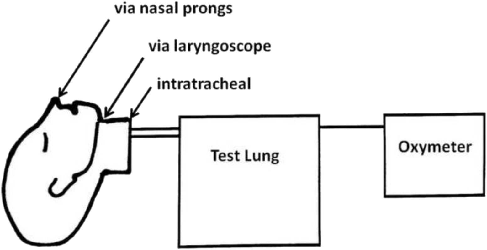 A Dual-Use Laryngoscope to Facilitate Apneic Oxygenation