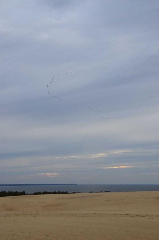 Ciel d'automne à Roanoke Island USA