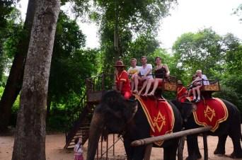A dos d'éléphant au Bayon