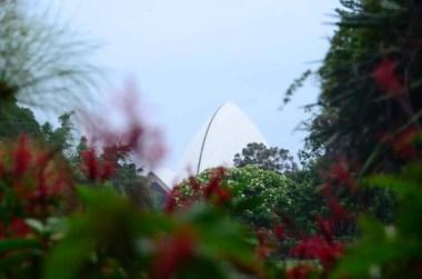 Opera House depuis Botanic Garden