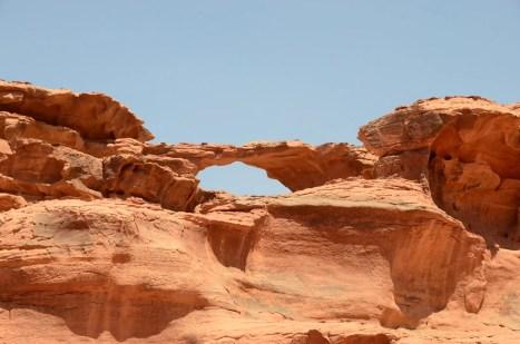 Arche du désert