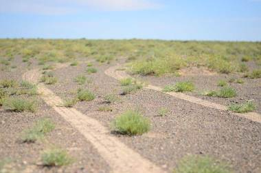 Piste du désert de Gobi