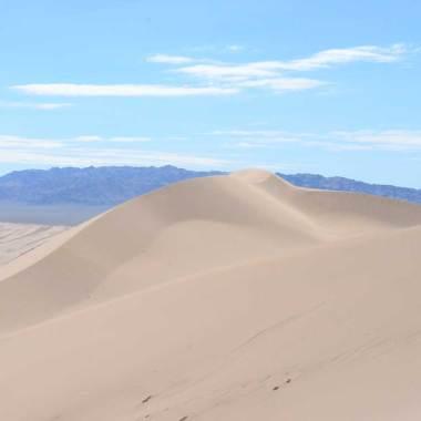 Vue du haut de la dune