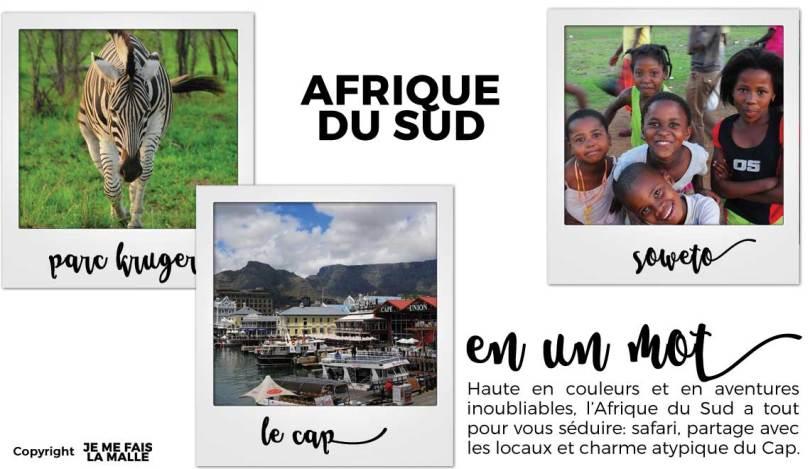 Tableau-voyage-afrique-du-sud