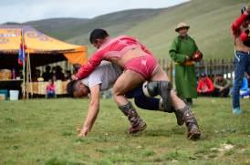 Lutteurs mongols au combat