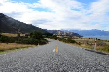 Sur la route du Fox Glacier