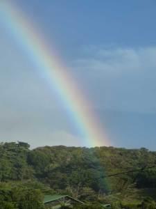 Arc en ciel sur la canopée du dessus, Monteverde, Costa Rica