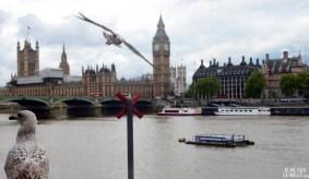 Maisons du Parlement, Londres