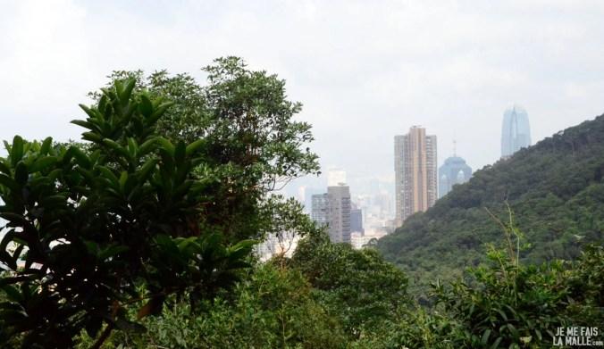 Immeubles derrière la végétation