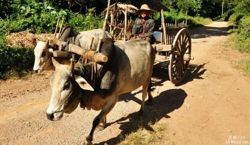 Transport moderne