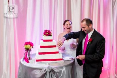 042013, Weaver Wedding, Procopio Photography-085