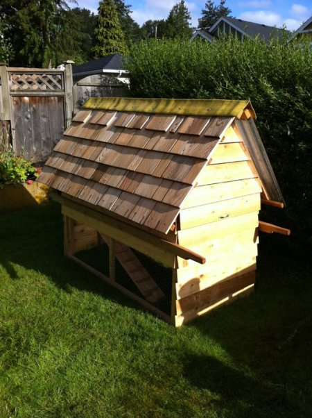 "This is a picture of an incredibly well made chicken coop. It is 3X6 and features a pitched shake shingled roof on one side, and a polycarbonate see through panel on the other side. It is a ""bare floor chicken tractor""."