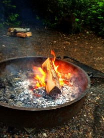 Firepit! Burn baby burn. Very low grills -suitable for steak cooking.