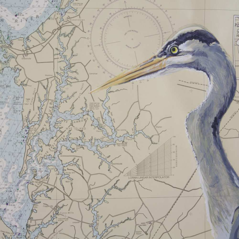 Artist Jen Bell's Blue Heron on Chesapeake Bay