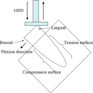 Effect of Dynamic Loading on the Integrity of the