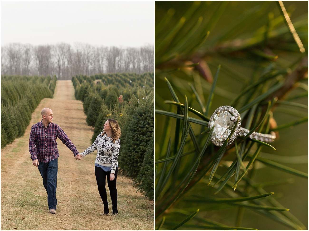Pine_Valley_Farms_Engagement_Maryland_Wedding_Photographer_0002