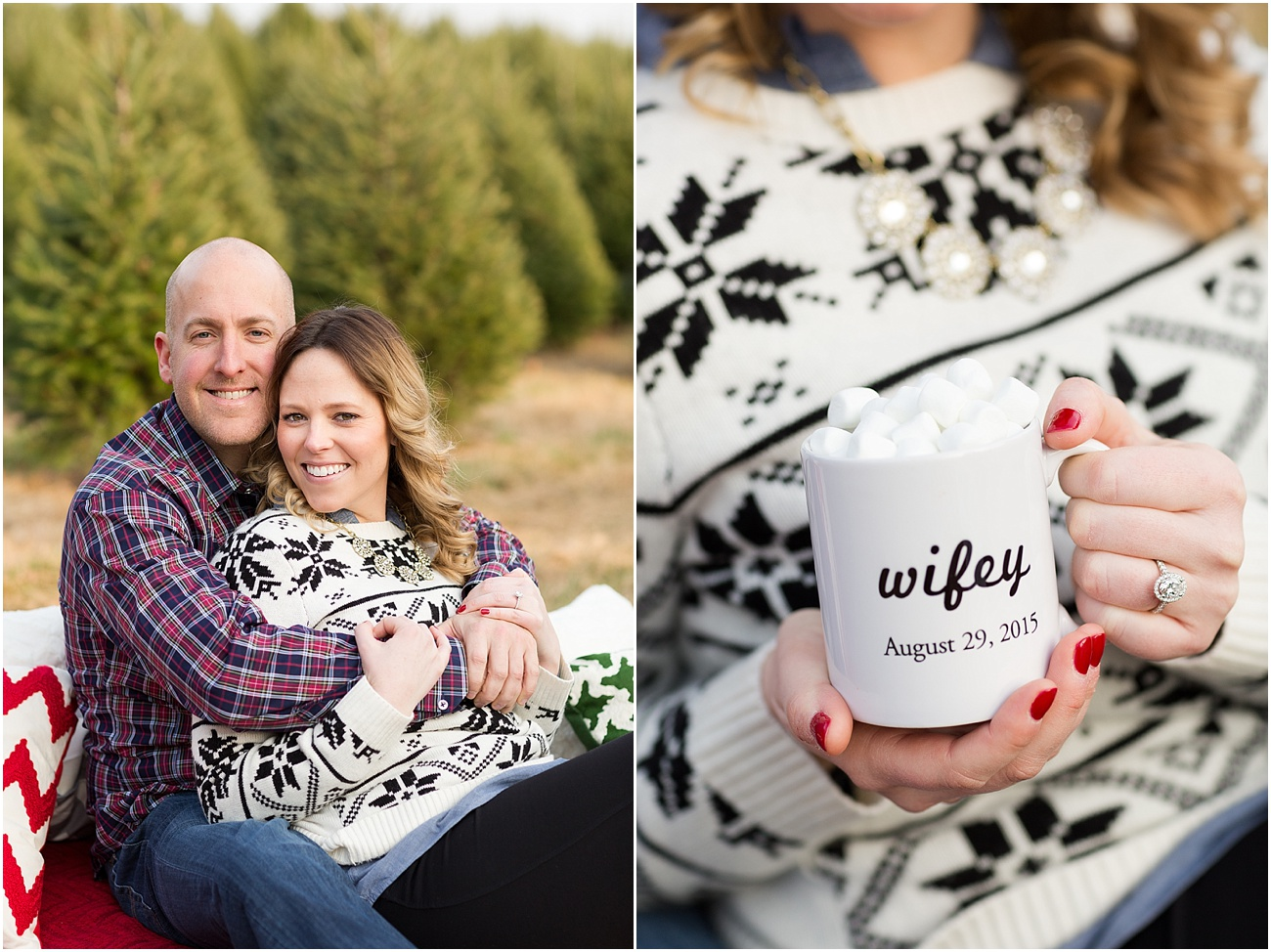 Pine_Valley_Farms_Engagement_Maryland_Wedding_Photographer_0008