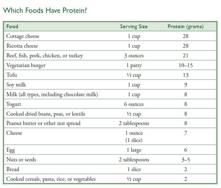 which foods have protein