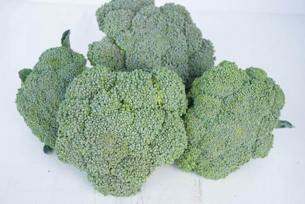 Broccoli from CSA Box