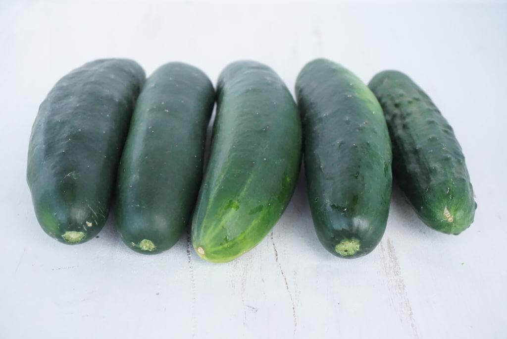 Cucumbers from CSA Box
