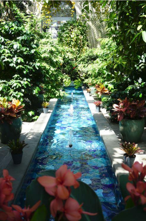 US Botanical Garden Pool