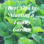 Best Tips to Start a Family Garden