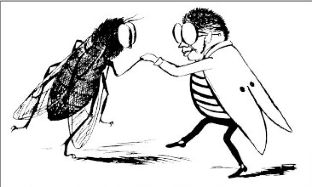 cartoon_bugs