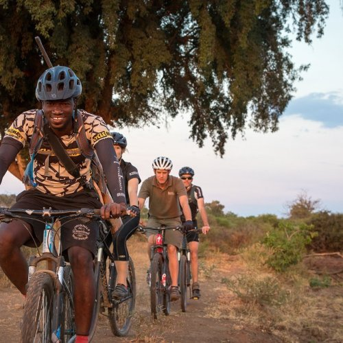 Botswana Safari & Cycling