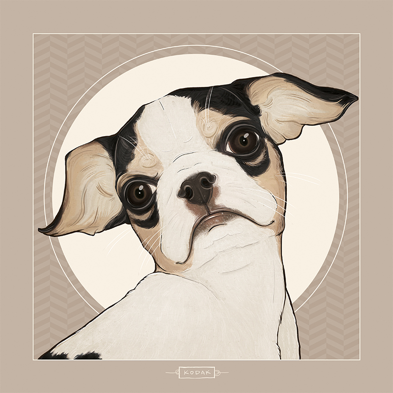 """Kodak"" digital pet portrait. 2015."