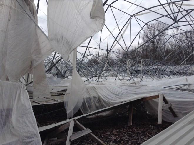 Jenna Citrus Abandoned IMG_0322