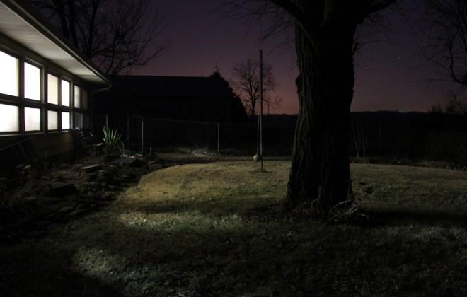 Night Trees Long Exposure Stars Jenna Citrus ArtIMG_9865