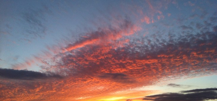 Writing Purposeful Memoir: Fueling Our Creative Fires