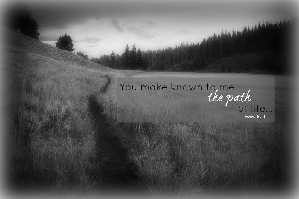 Off the beaten path…