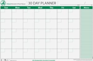 PlanetSafe Planner 30-day planner