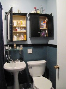 Small bathroom- medicine cabinet and cabinet over the toilet