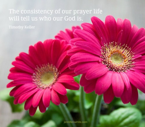 consistency prayer life keller quote