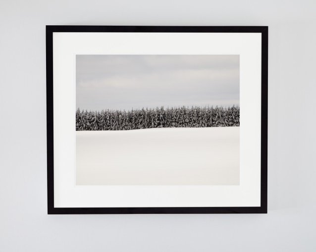 Winter Landscape Photo - Where the Wild Things Are - Tree Wall Art