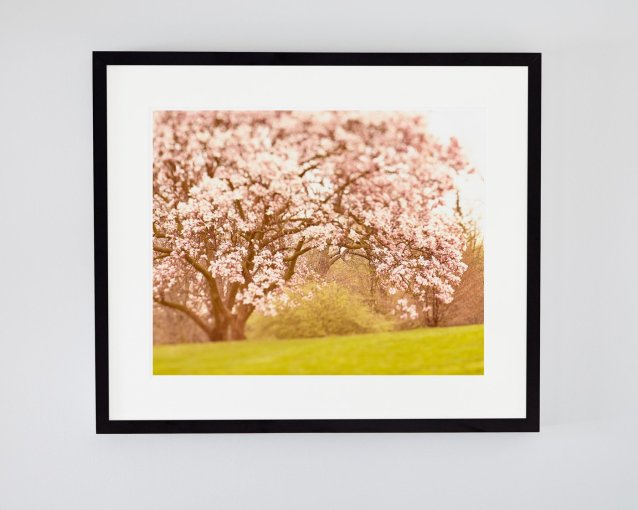 Sweet Moments - Spring Landscape Photography Print