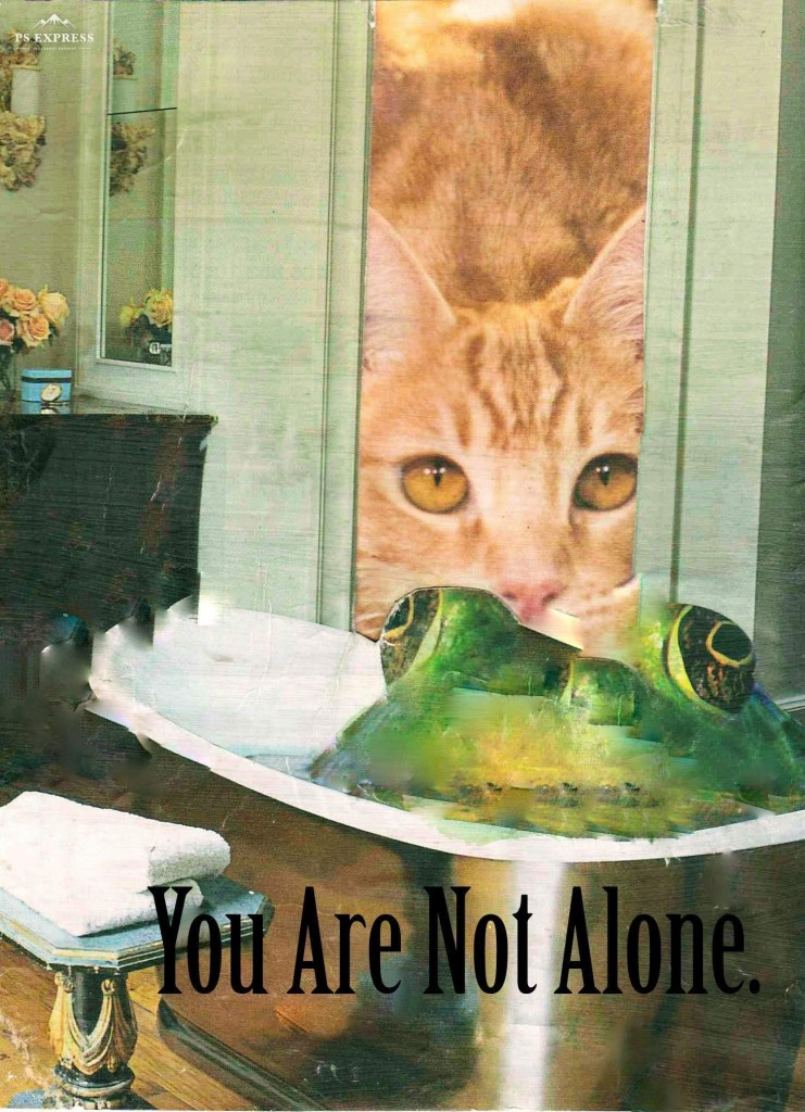 You are not alone. Surreal magazine collage, frog in tub, cat looking through doorway.
