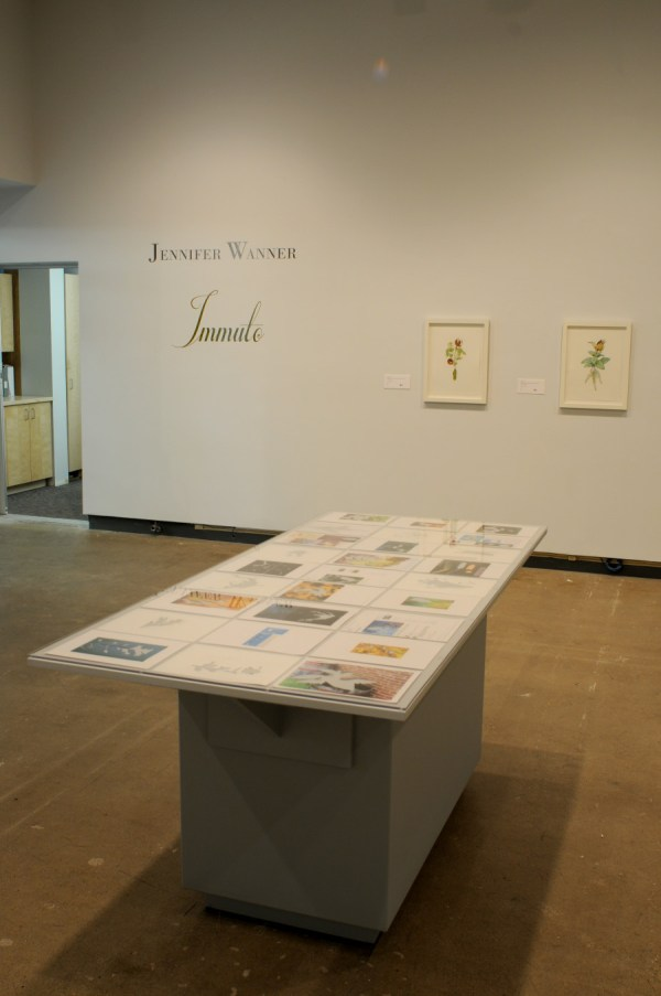 Jennifer Wanner - Messis Harvest 2008 2012 Dunlop Art