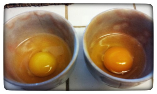 Two eggs, one store-bought and one fresh from a farm.