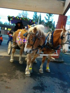 Our little local village gets all dolled up for Christmas. Most important, I get to pet a horsie.