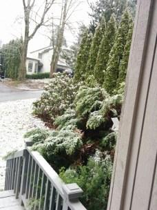 omg snow