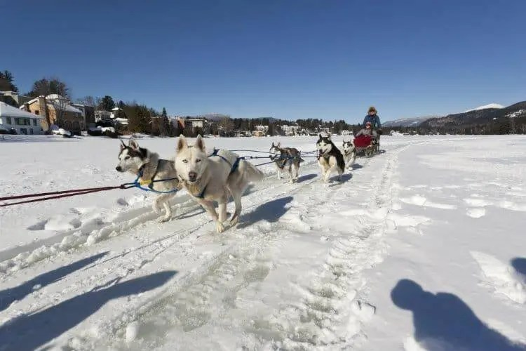 Epic winter activities in lake placid adirondacks for Winter activities in nyc