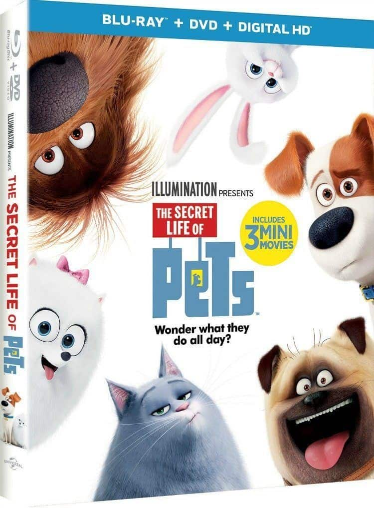 The Secret Life of Pets, What's Your Pets Secret Life Like