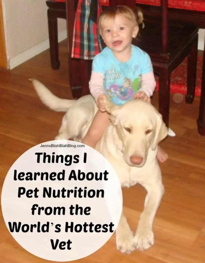 Things I learned About Pet Nutrition from the World's Hottest Vet
