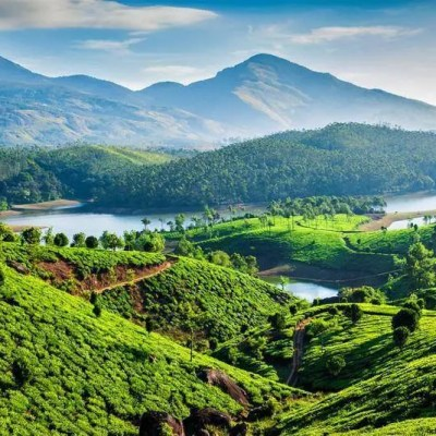 The Best Hotels to Stay in Munnar