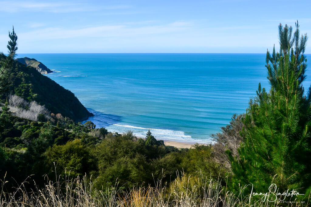 View from the Anaura Bay Walkway, East Cape, New Zealand