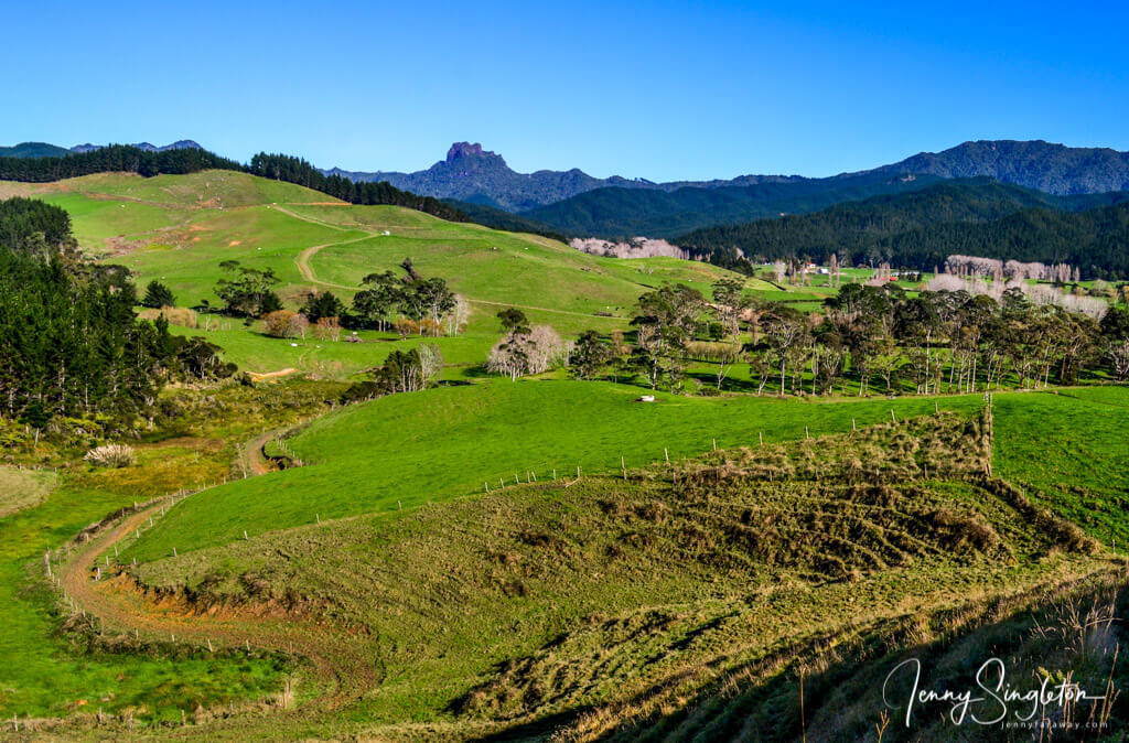 View of Castle Rock from Whangapoua Road, Coromandel, New Zealand