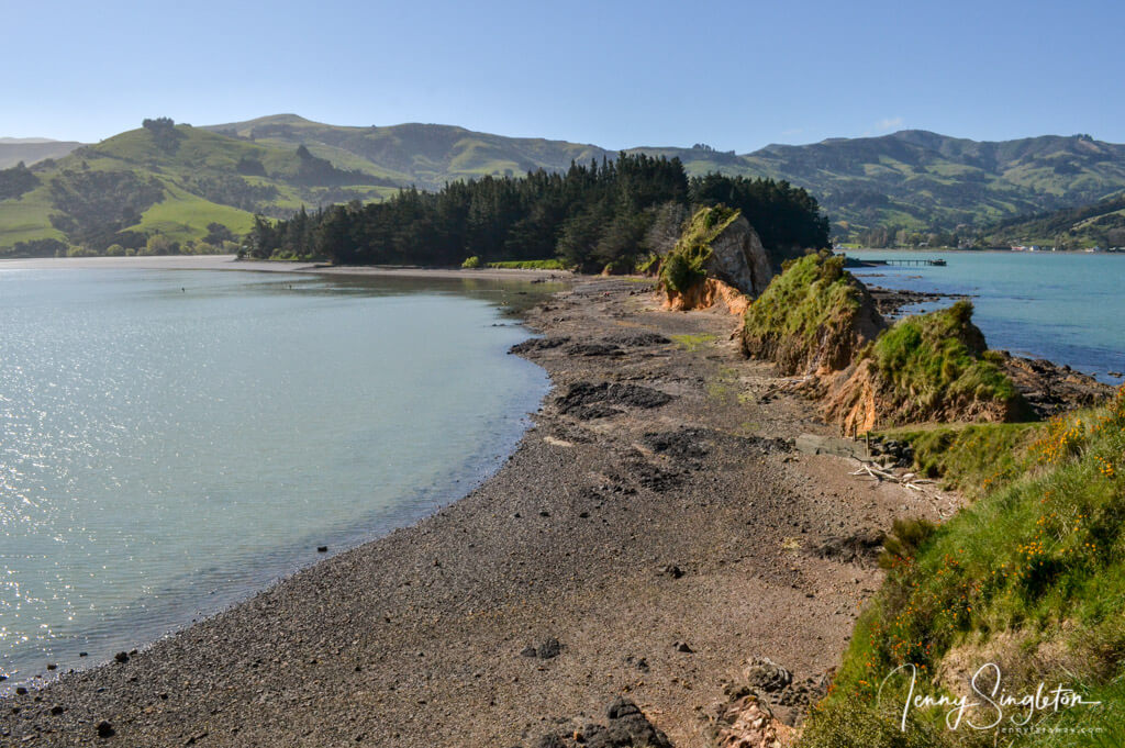 View back to the mainland along the beach and rocky spine of the Onawe Peninsula.
